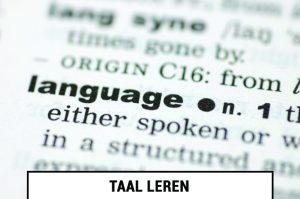 Online taalcursussen en taalcursus mogelijkheden in het buitenland